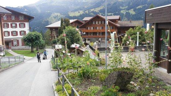 Hotel Baeren: Baren is on right, this is garden near deck.