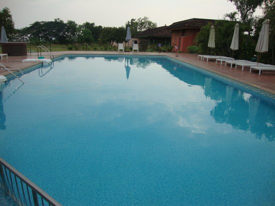 The International Centre Goa: Nice Swimming Pool