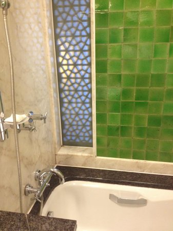 Hyderabad Marriott Hotel & Convention Centre: Filthy Shower