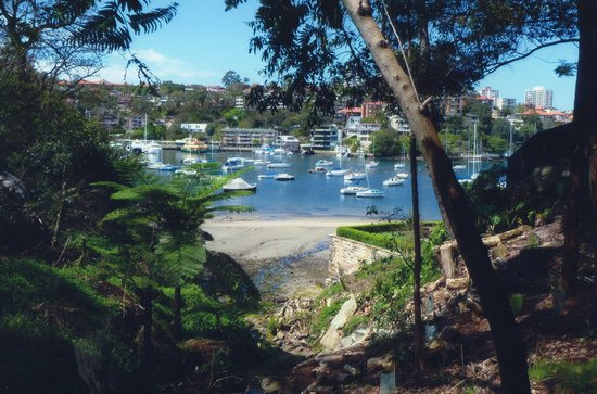 Cremorne Point to Mosman Bay Walk: Paradise, What A Great Place To Live.