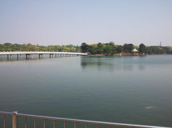 Ohori Park: 13.05.12【大濠公園】公園の風景①