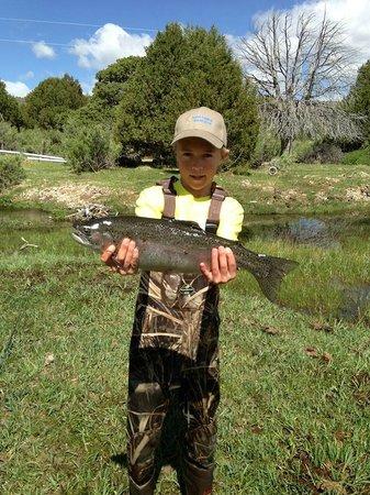 Road Creek Inn: Fly Fishing