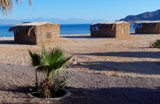 Eco Camp Asala Beach: Beach huts