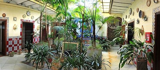 Hotel San Andres II: The 'jungle' lobby, not your usual hotel