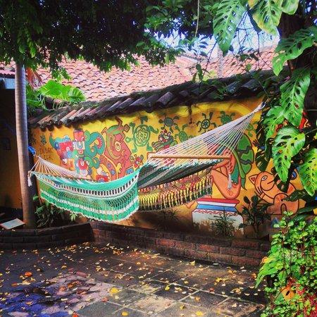 Hostal La Tortuga Booluda: The hammock Life