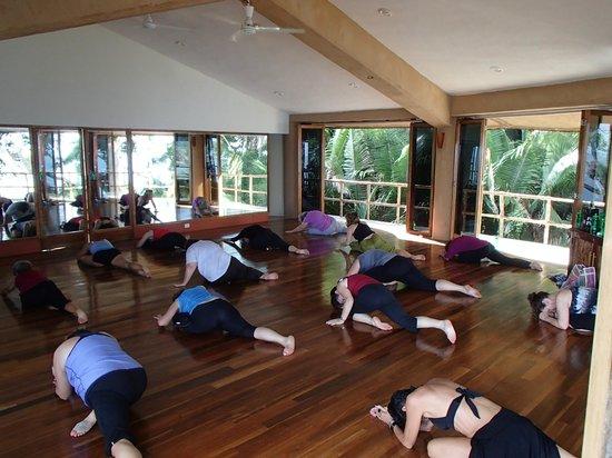 Mar de Jade Retreats Wellness Vacation: Amazing Classes!