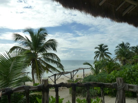 Las Ranitas Eco-boutique Hotel: vista de la playa