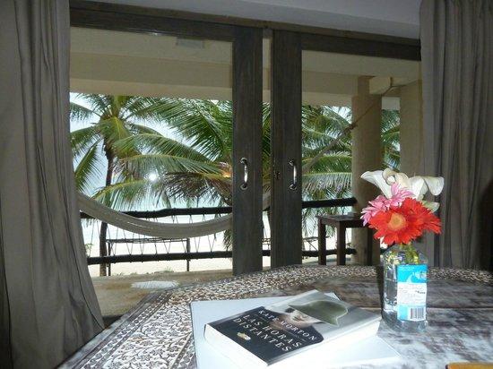 Las Ranitas Eco-boutique Hotel: vista desde habitacion en 1°piso