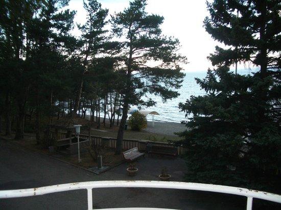 Blue Sevan Resort Centre: balcony view