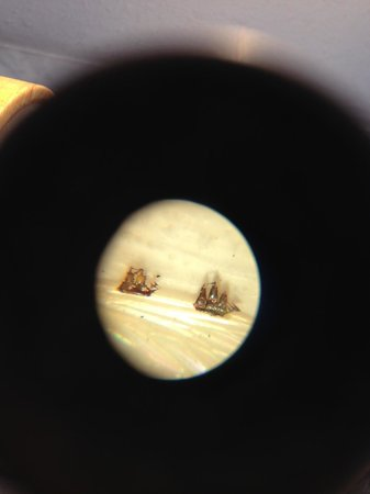 Museum of Miniatures: Sailing boats on the wing of a mosquito