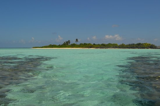 Kuri Inn: desert island