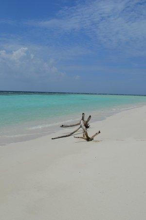 Kuri Inn : omadhoo beach