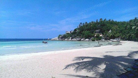 Palm Leaf Resort: Uitzicht vanaf het restaurant