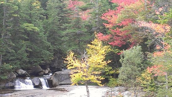 Grafton Notch State Park : Leaves Turning Colors