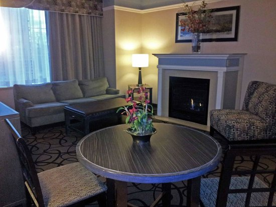 Hampton Inn & Suites Buffalo Downtown : Sitting Area with Fireplace