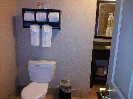 Hampton Inn & Suites Buffalo Downtown : Bathroom