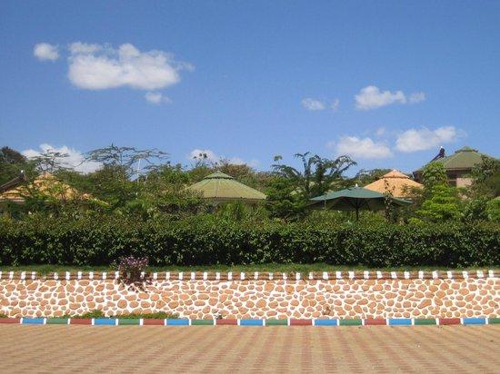 Flamingo Safari Lodge & Camp Site: Gelände