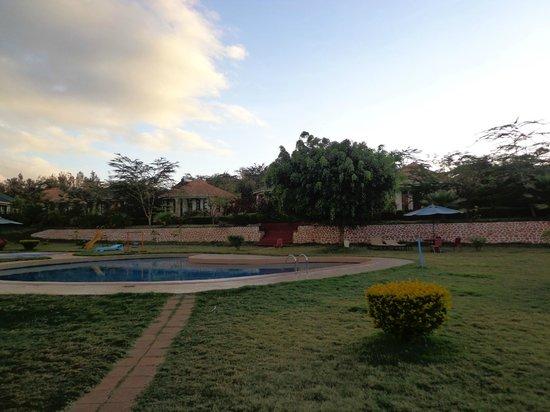 Flamingo Safari Lodge & Camp Site: Pool