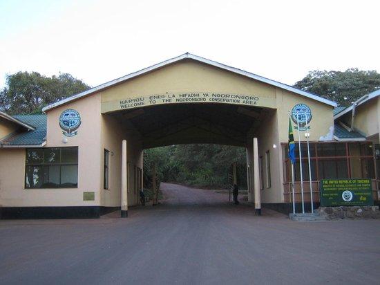 Flamingo Safari Lodge & Camp Site: Ngorongoro Conservate