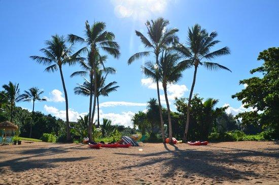 St. Regis Princeville Resort: Grounds at St Regis Hotel