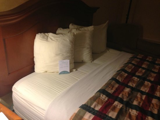 Red Lion Hotel Pocatello: Bed with bugs.