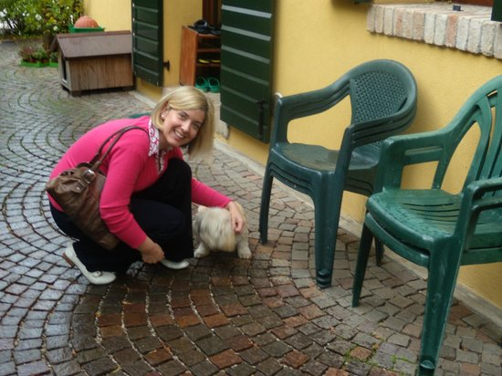 B&B Alle Rondini: ..with the cutest dog :)