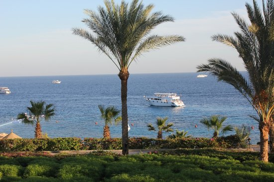 Hyatt Regency Sharm El Sheikh Resort : View from our room