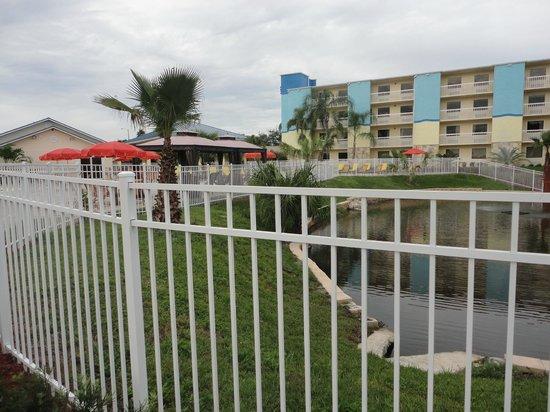 SUNSOL International Drive: Área da piscina