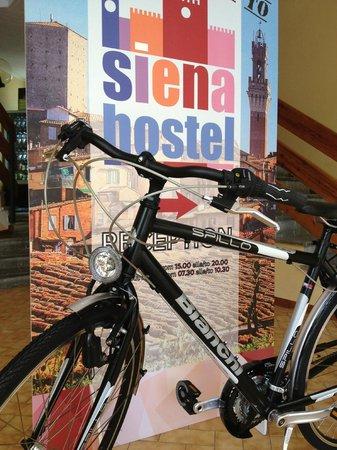 Siena Hostel Guidoriccio: noleggio biciclette (Bianchi point)