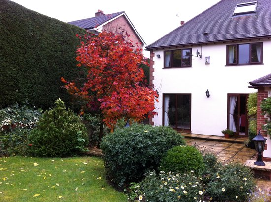 The Claddagh Guest House: The beautiful backyard/garden of Claddagh House, with Fall colors