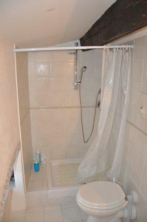 Camere il Giglio: La doccia impraticabile