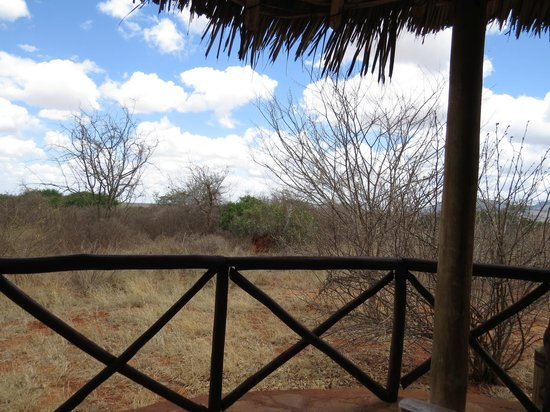 Tsavo Mashariki Camp: View from balcony of 'Jipe' tent
