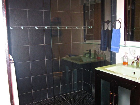 The 1857: modern shower full bathtub also