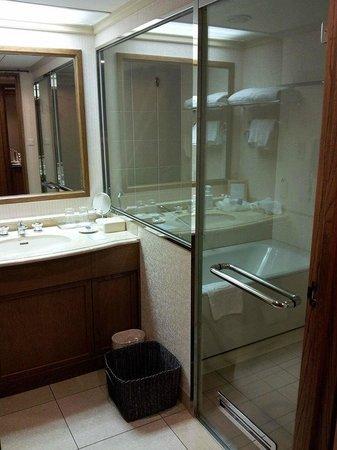 Hotel Nikko Princess Kyoto: Bathroom