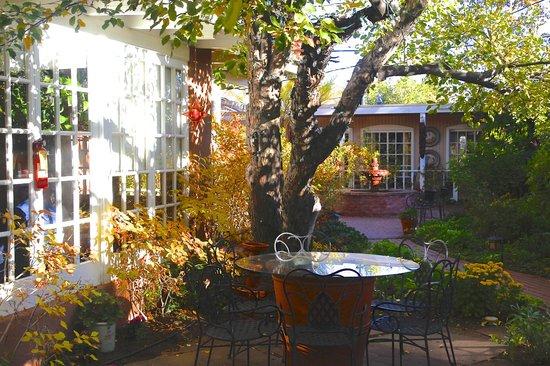 Casa Culinaria Don Gaspar : Courtyard Garden Area