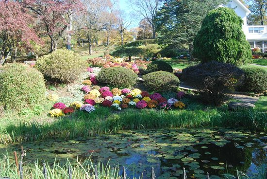 Seamon Park: Pond and Flowers