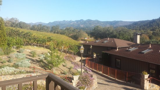 The Wine Country Inn: View from the balcony