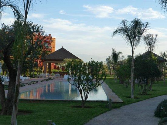 Le Vizir Center: piscine résidence