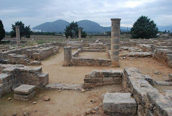 Pol·lèntia: roman columns