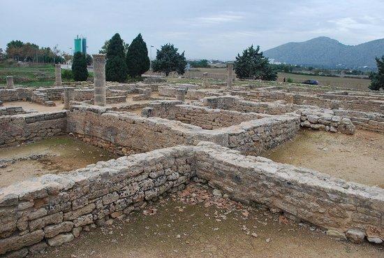Pol·lèntia: roman walls