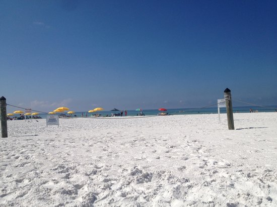Sea Crest Apartments on Siesta Key : Cresent beach