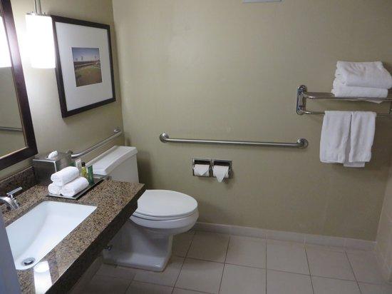 Hilton St. Louis at the Ballpark: bathroom
