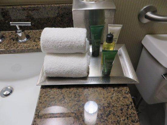 Hilton St. Louis at the Ballpark: bathroom stuff