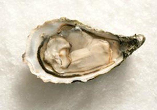 Loch Fyne oyster