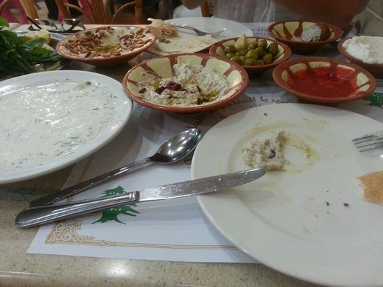 Lebanese Mill : Just a small selection of our meal.