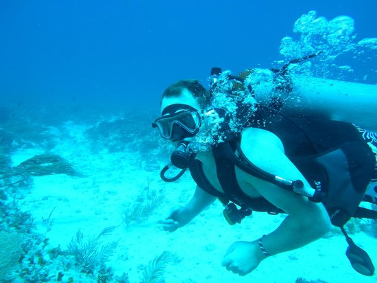Always Diving & Water Sports: diving cancun