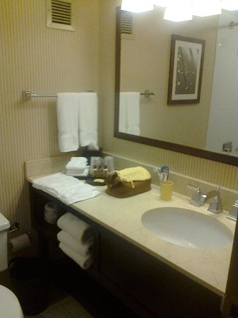 Sheraton Columbia Town Center Hotel: Badezimmer