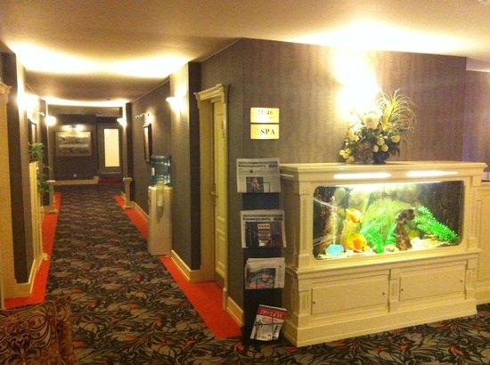Hotel Brighton: Коридор