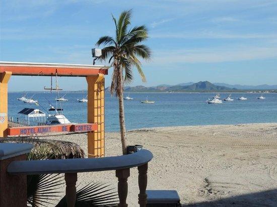 Hotel palmas de cortez palmas de cortez beach