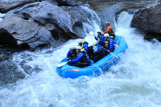 Wildwater Rafting - Chattooga : Rafting